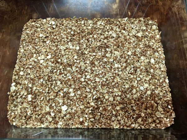 granola date bars
